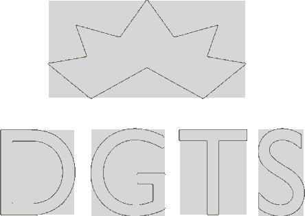 DGTS | DIAMOND TRADING & MANUFACTURING PLATFORM